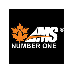 AMS Number One